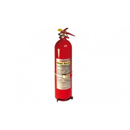 Lifeline steel hand held extinguisher