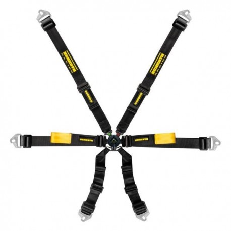 Schroth Enduro 2x2 harness